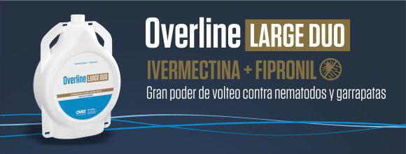 overline-580x220